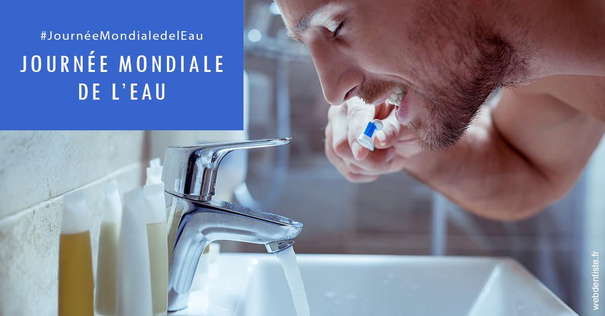https://dr-michael-szejner.chirurgiens-dentistes.fr/Journée de l'eau 2