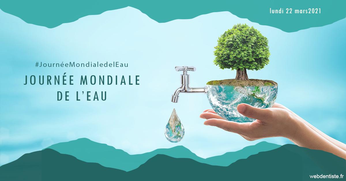 https://dr-michael-szejner.chirurgiens-dentistes.fr/Journée de l'eau 1